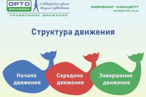 Структура движения - морфинг-концепт